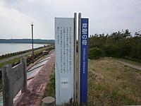 2013051325