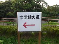 2013082145