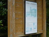 2013090336