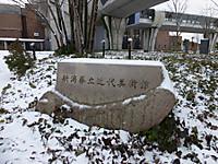 2014010807
