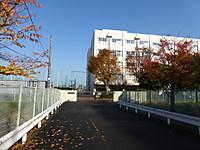 2014120105